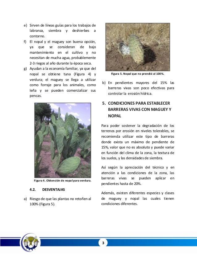 clarificación de agua por por la penca de nopal pdf