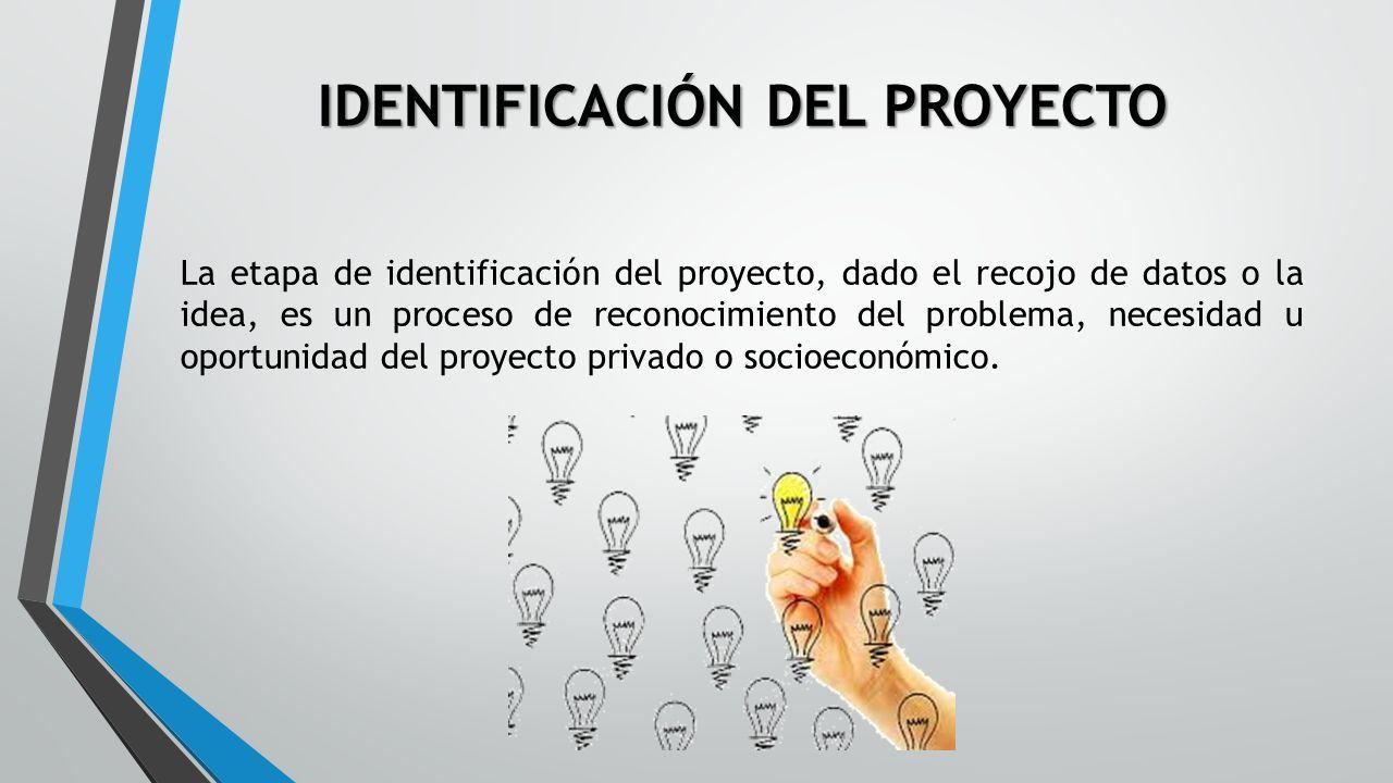 ciclo de un proyecto de inversion pdf