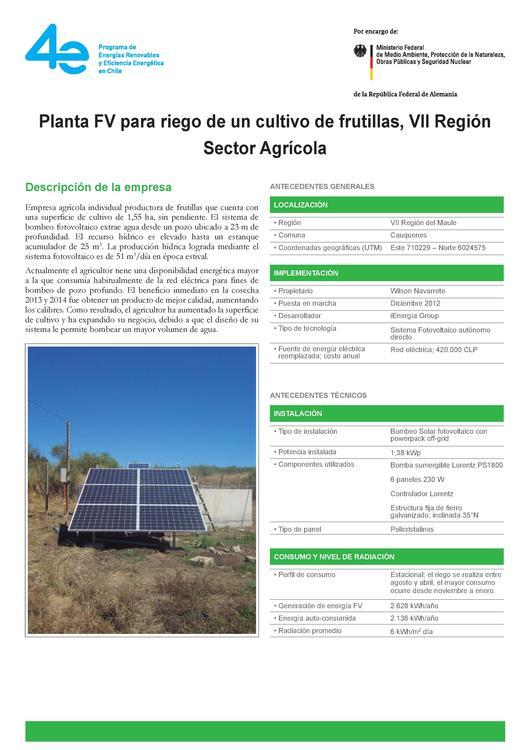 cultivo de champiñones en chile pdf