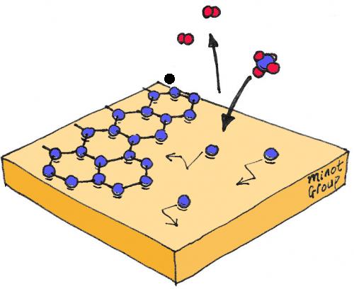chemical vapor deposition graphene pdf