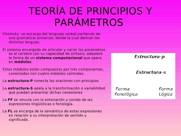 chomsky principios y parámetros pdf