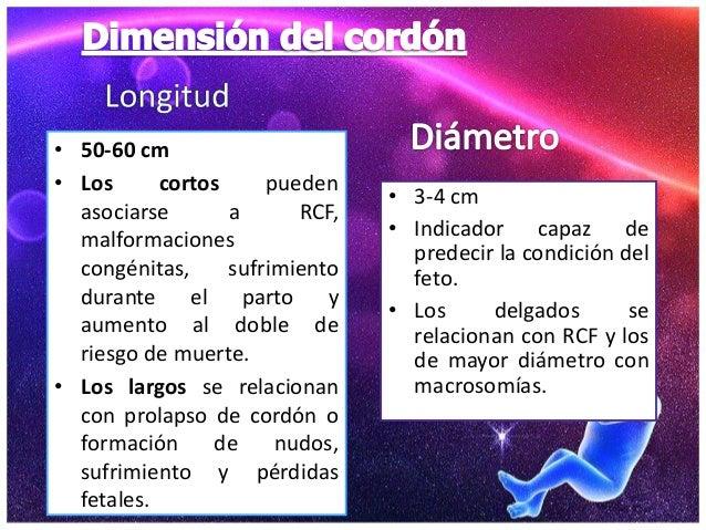 anomalias de la placenta pdf