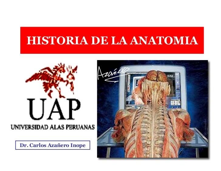 anatomia de la historia pdf