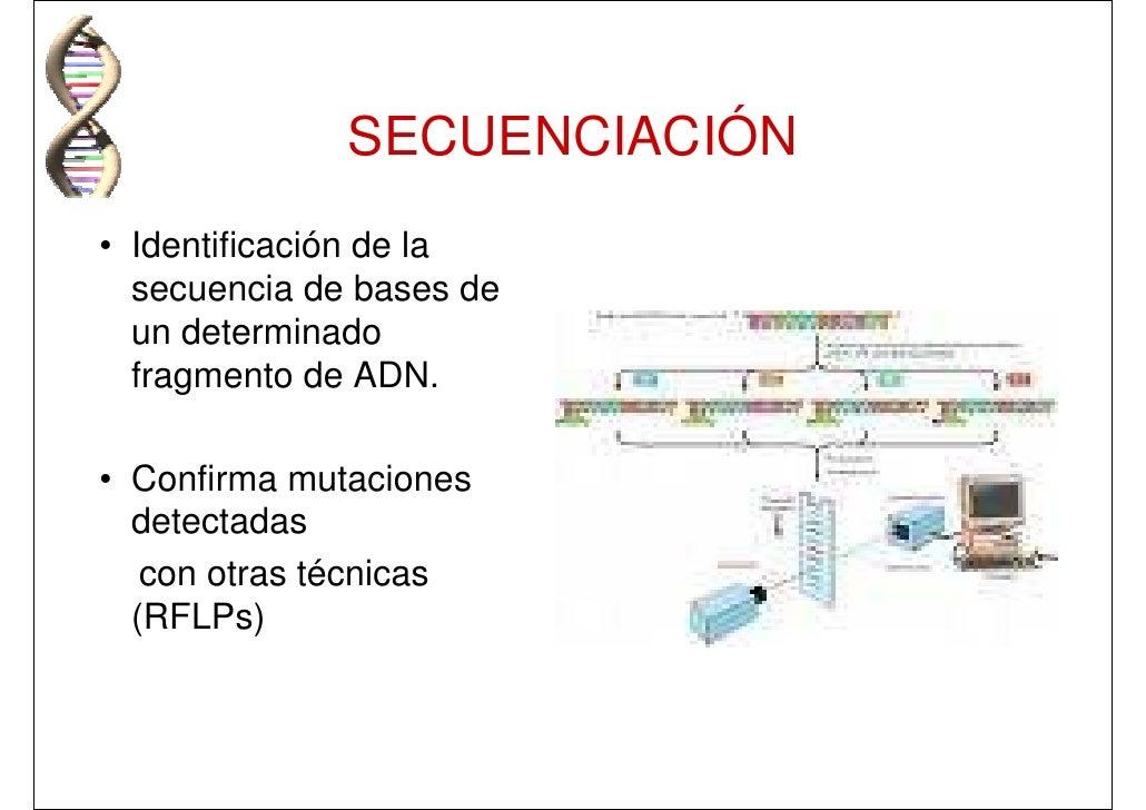 coprocultivo pdf formas de diagnostico