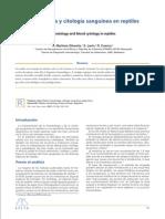 anatomia de animales domesticos köning pdf