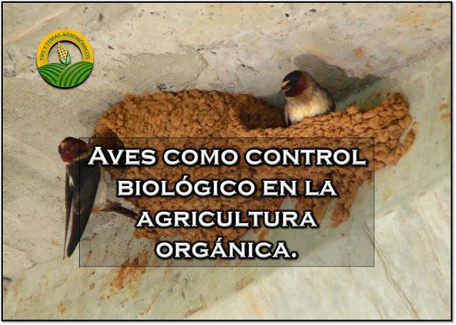 aves como control biologico pdf