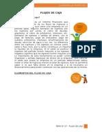 bajar libro de flujo de caja proyectado pdf