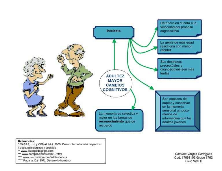aspectos fisico del adulto mayor pdf