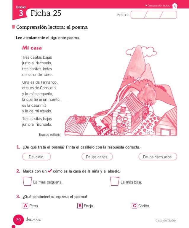 cuaderno de actividades santillana pdf 3 basico