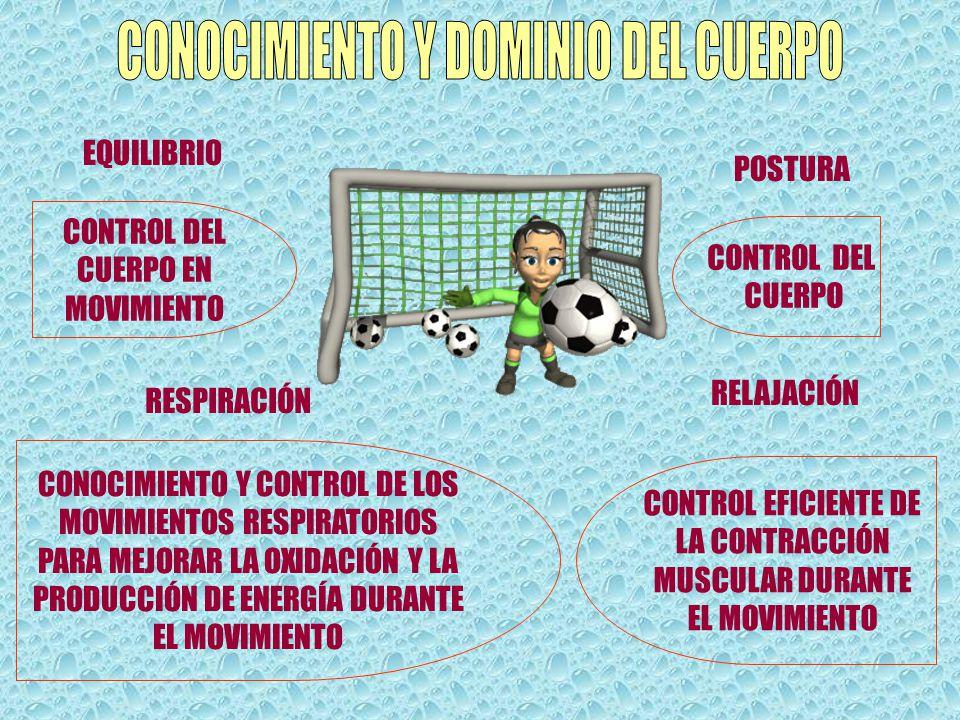 cuerpo y educación física descargar pdf