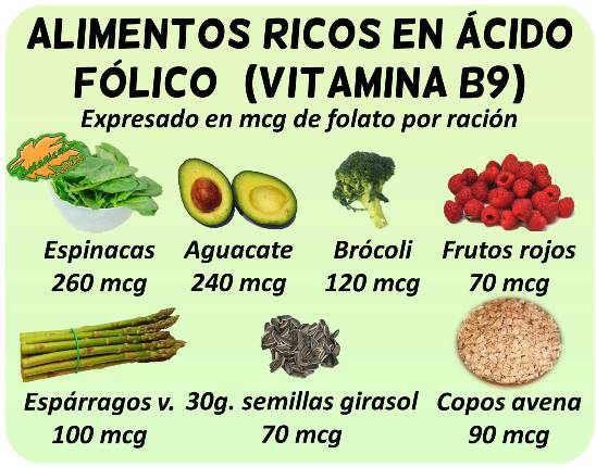 acido pantotenico fuente alimentaria pdf