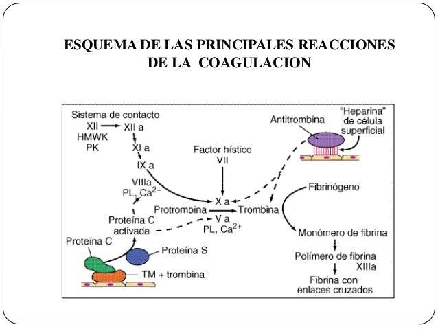 alteracion en la funcion plaquetaria pdf