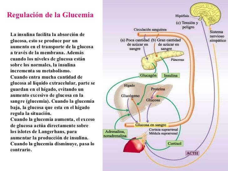alzheimer clinica las condes actualizacion pdf