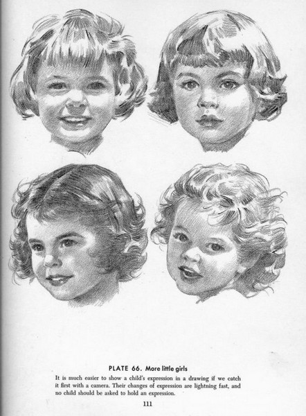 andrew loomis drawing the head and hands pdf