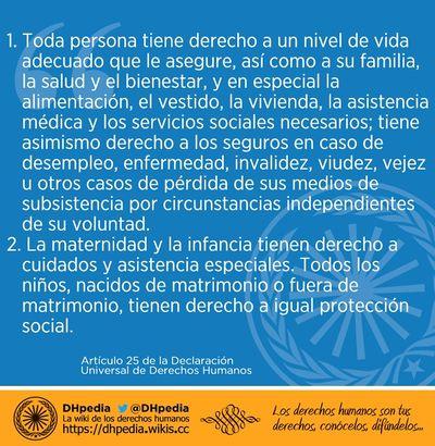 articulo 25 de la declaración de derechos humanos pdf