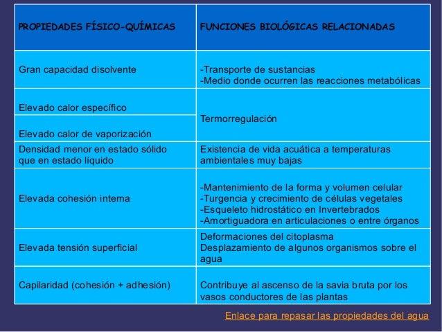 beneficio del agua en organismo oms pdf