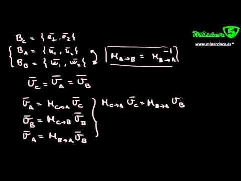 cambio de base algebra lineal pdf