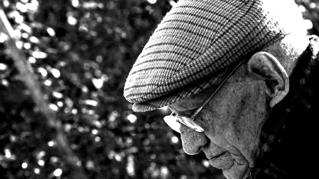 cambios en el envejecimiento pdf