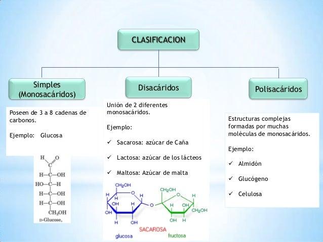 caracteristicas de los alimentos funcionales pdf