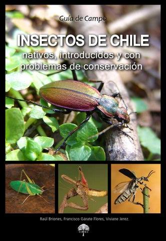 coleopteros de la reserva nacional río clarillo pdf