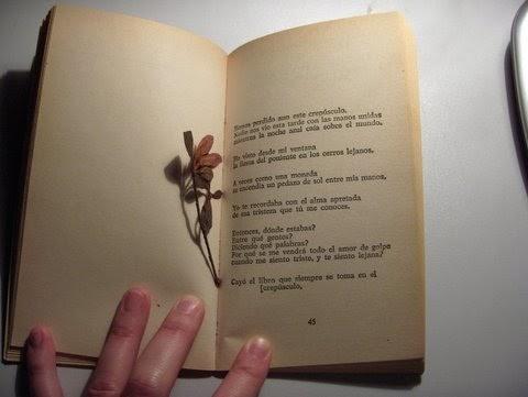 como analizar un poema pdf