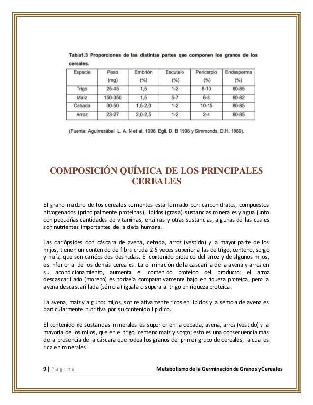composicion quimica de la avena pdf