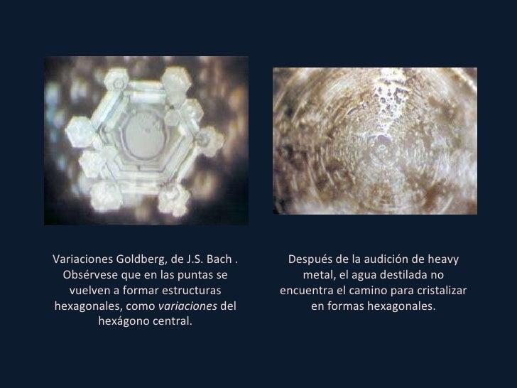cristales de agua masaru emoto pdf
