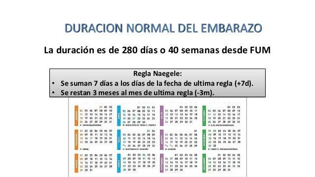 calcular fecha probable de parto y edad gestacional pdf